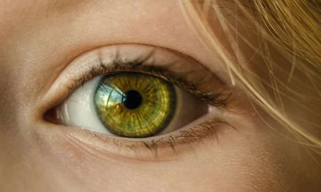 Si no lo veo no lo creo: la importancia de «ver» el elemento imposible